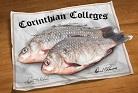 Worst Colleges