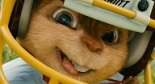 Chipmunk in FB Helmet