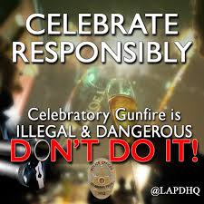 Celebratory Gunfire 4