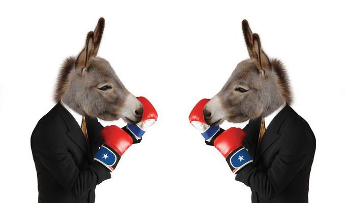 fighting_donkeys2