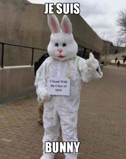 Je Suis Bunny