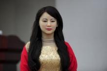 Chinese Humanoid Robot