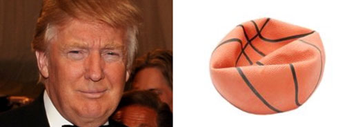 20 Things That Look Like Donald