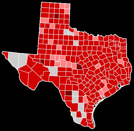 2010 Gubernatorial Election