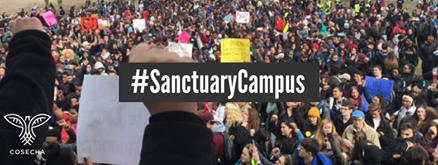 sanctuary campus.png