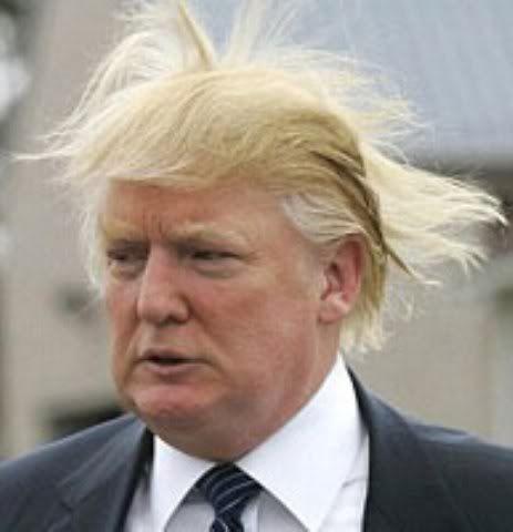 trumps-hair-1